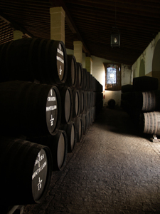 Jerez vineyards and sherry bodegas day trip